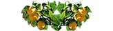 Agriturismo B&B Limoneto | Siracusa